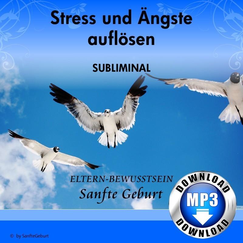 Stress und Ängste auflösen
